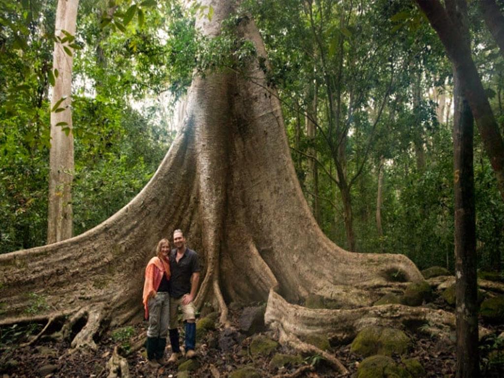 Khám Phá Vườn Quốc Gia Phú Quốc - Kenhphuquoc.com